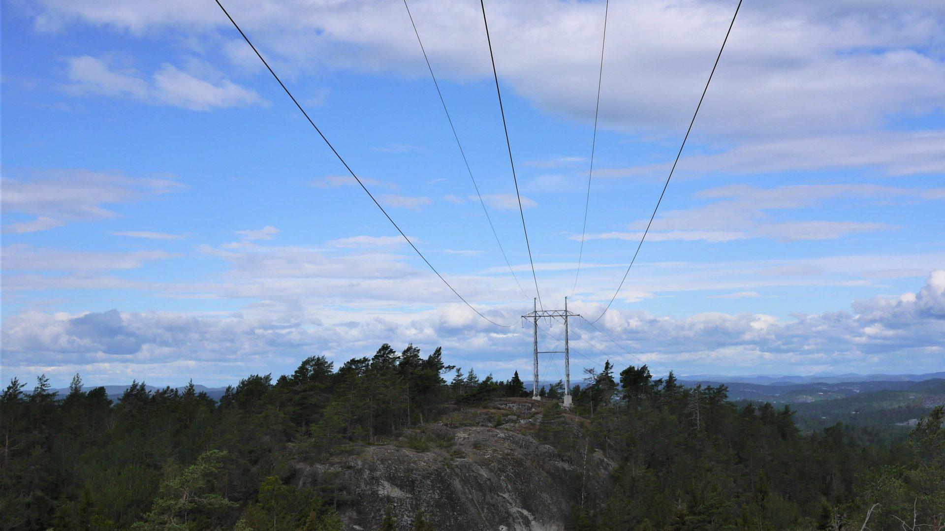 Norsk Skogrydding AS